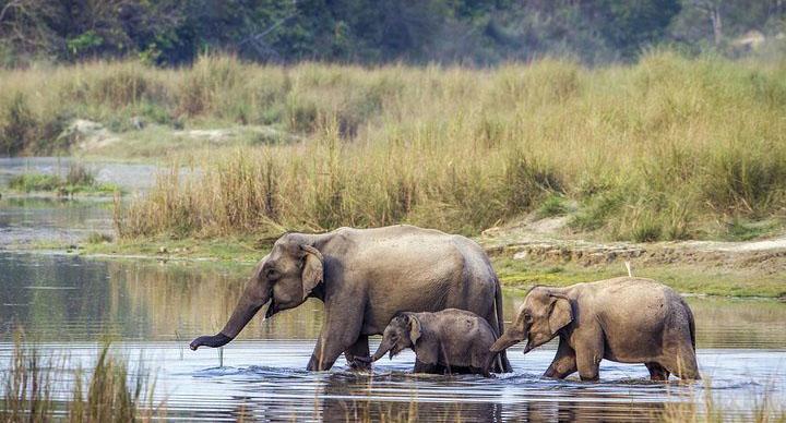Bardia National Park_visit_view_nepal_trek